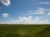 plains 24. maj 2015_2