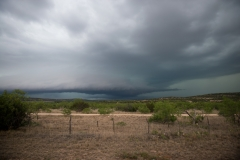 Texas 25. maj
