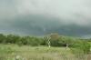 Texas-chase 19