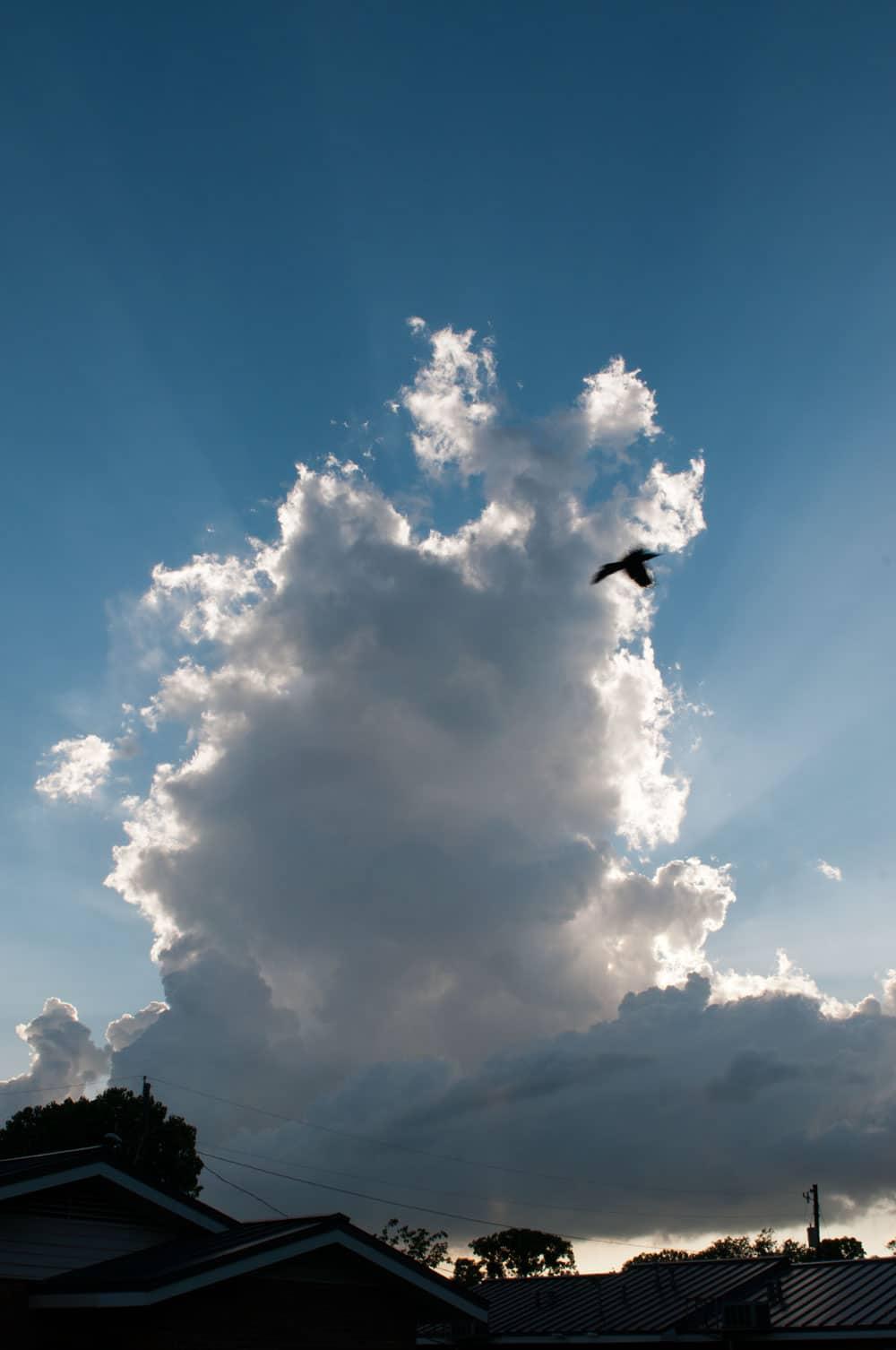Stormchase 2012 - Dag 8